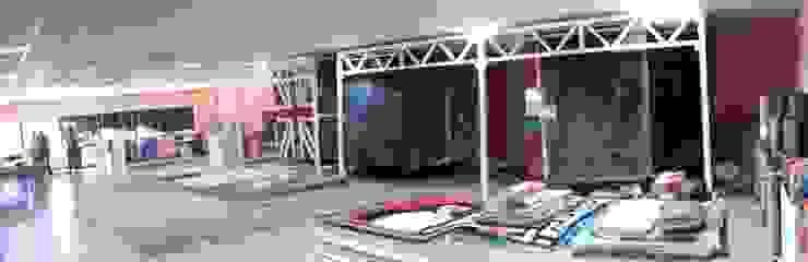 Importadores y distribuidores de alfombras de Eurotuft Moderno