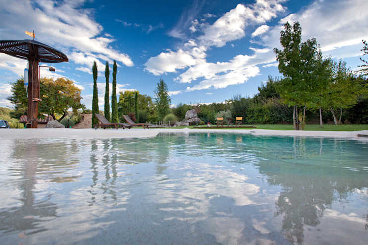 Pool by Biodesign pools, Modern