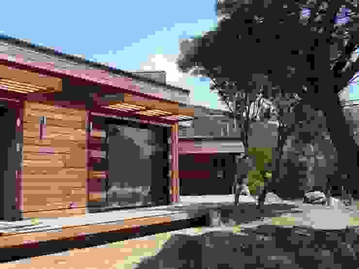 Houses by catherine vinciguerra