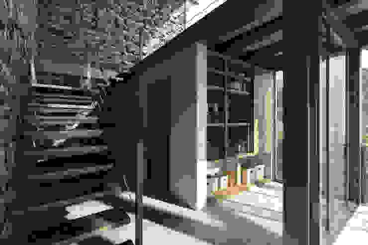 NATURAL LIGHT DESIGN STUDIO Modern corridor, hallway & stairs