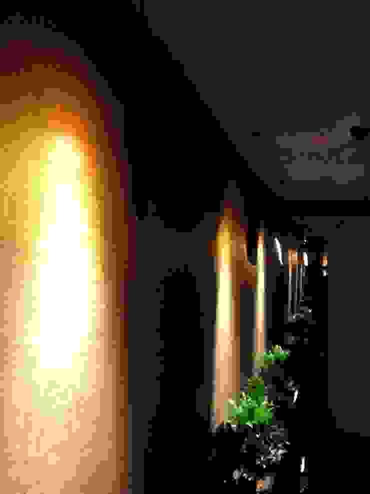 AS AYDINLATMA – Dekoratif Lighting: modern tarz , Modern