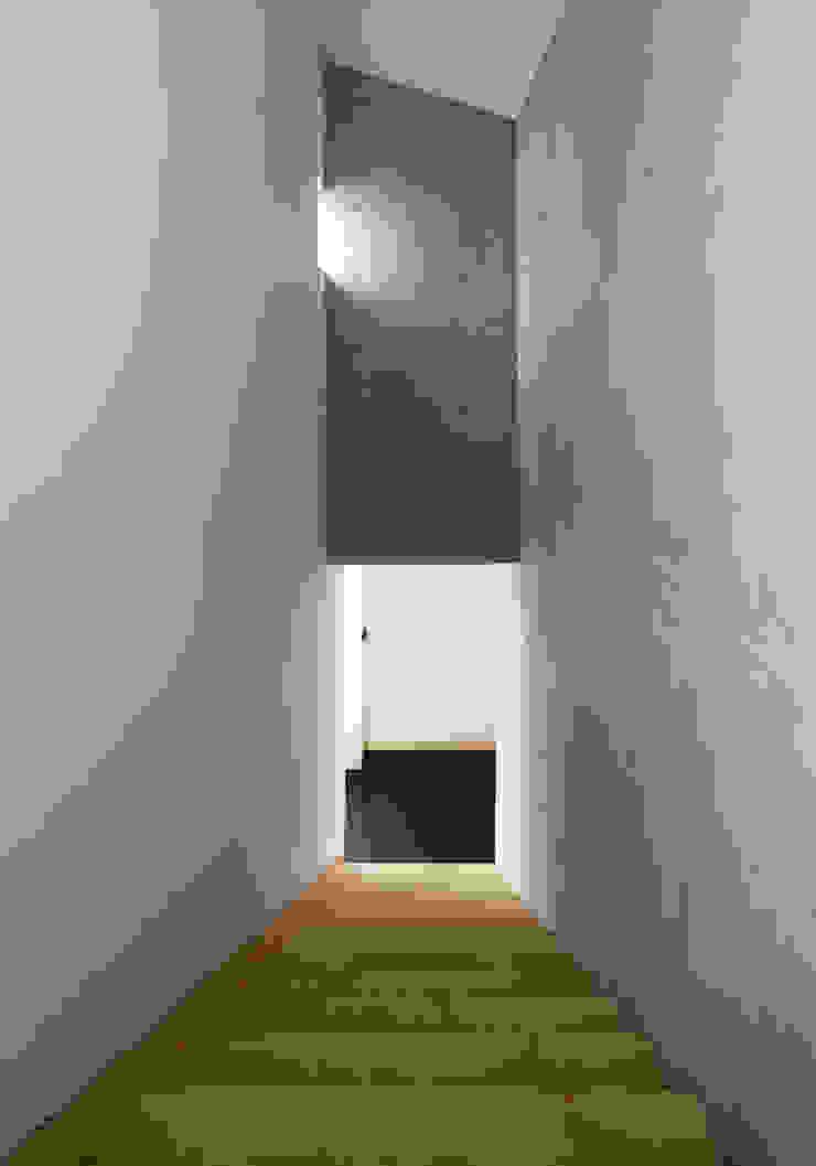 Modern Corridor, Hallway and Staircase by CHORA Modern