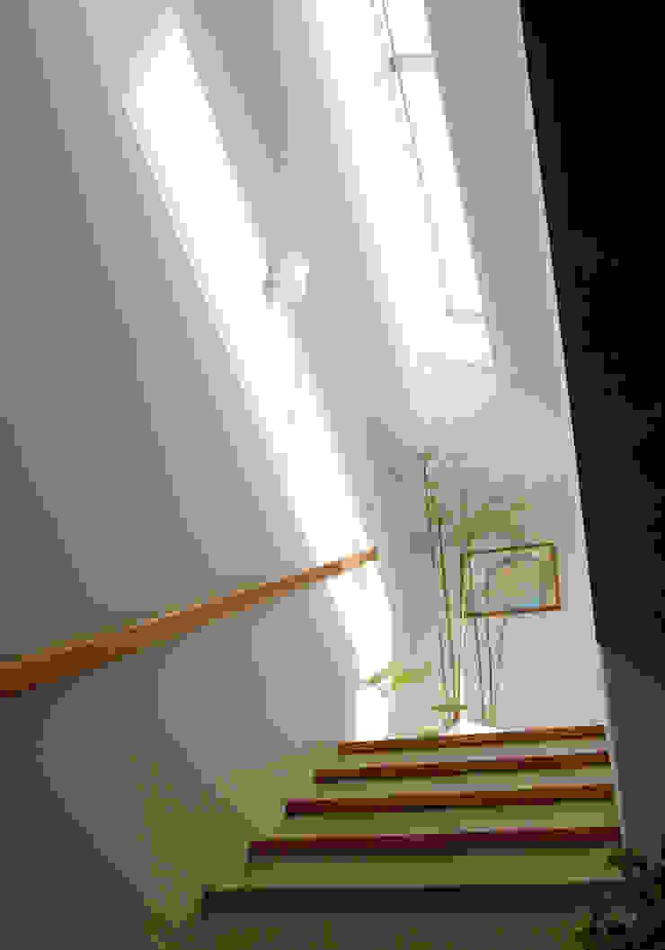 市川の家 北欧スタイルの 玄関&廊下&階段 の 長浜信幸建築設計事務所 北欧