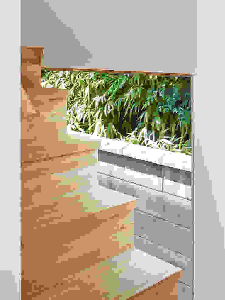 桂川の住宅 モダンスタイルの 玄関&廊下&階段 の MASAAKI TAKAHASHI architects モダン