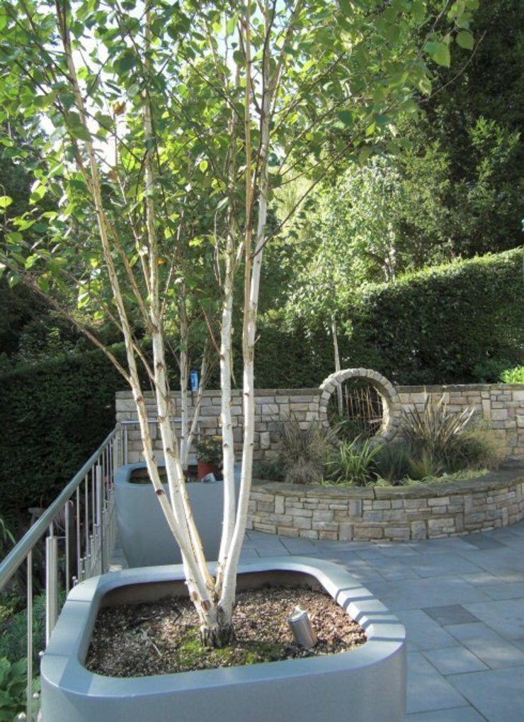 Large contemporary family garden design, Kenley, Surrey Modern garden by Linsey Evans Garden Design Modern