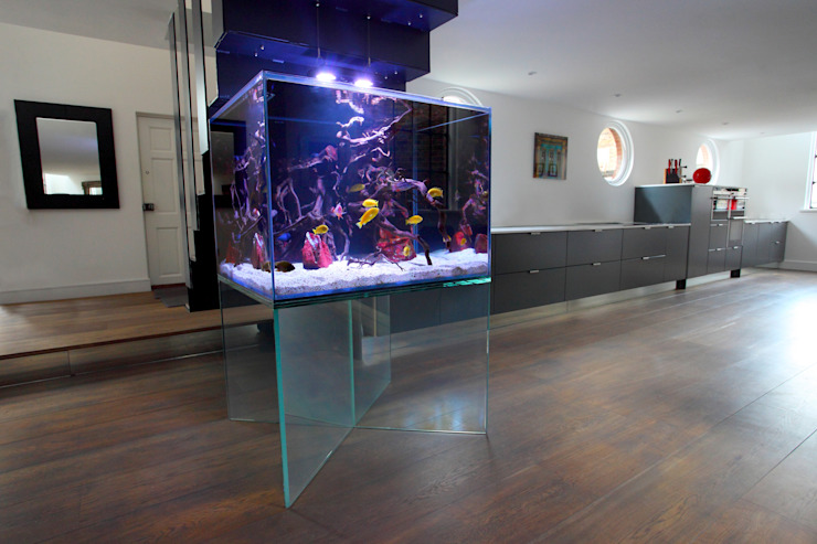 Floating Aquarium London Salas de estilo moderno de Aquarium Architecture Moderno