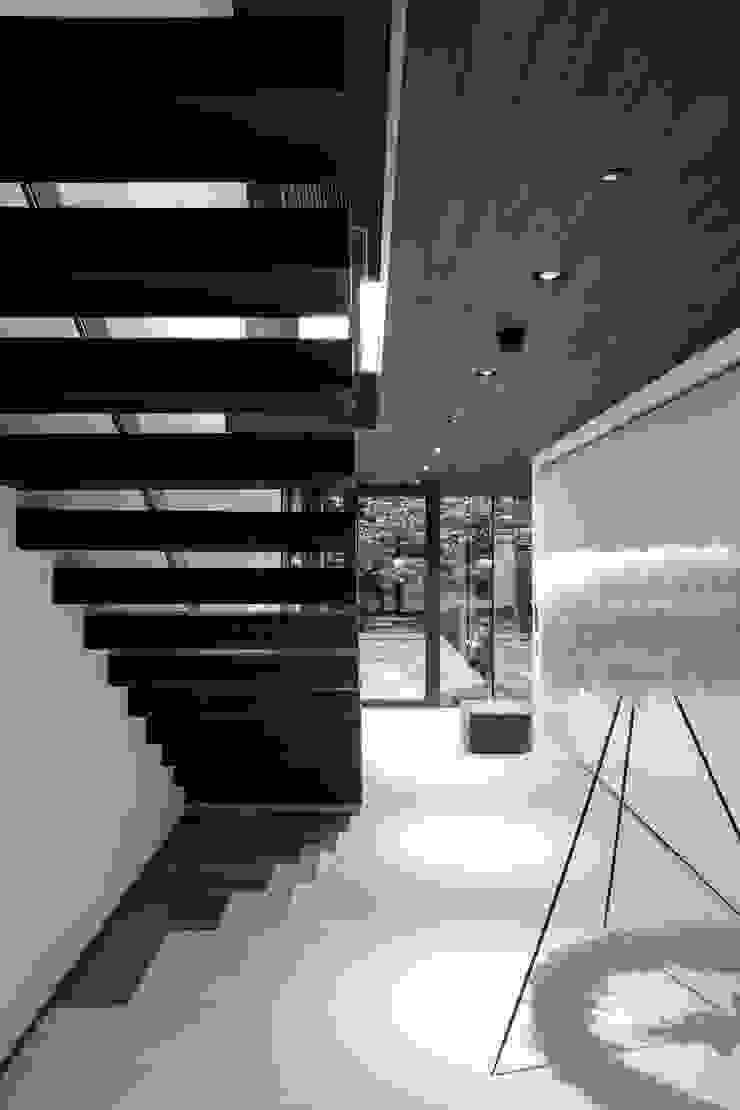 Photography – house in Bromley, private client Corredores, halls e escadas minimalistas por Adelina Iliev Photography Minimalista