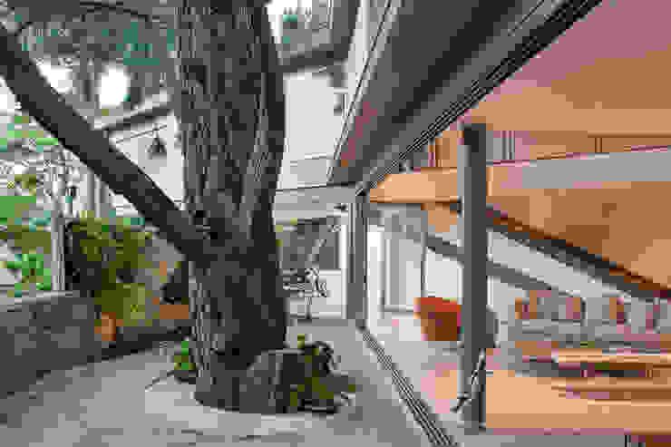 Casas de estilo moderno de SAA_SHIEH ARQUITETOS ASSOCIADOS Moderno