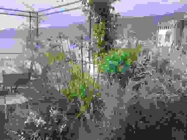 macchia di vegetazione GARDENStudio 'il giardiniere goloso'