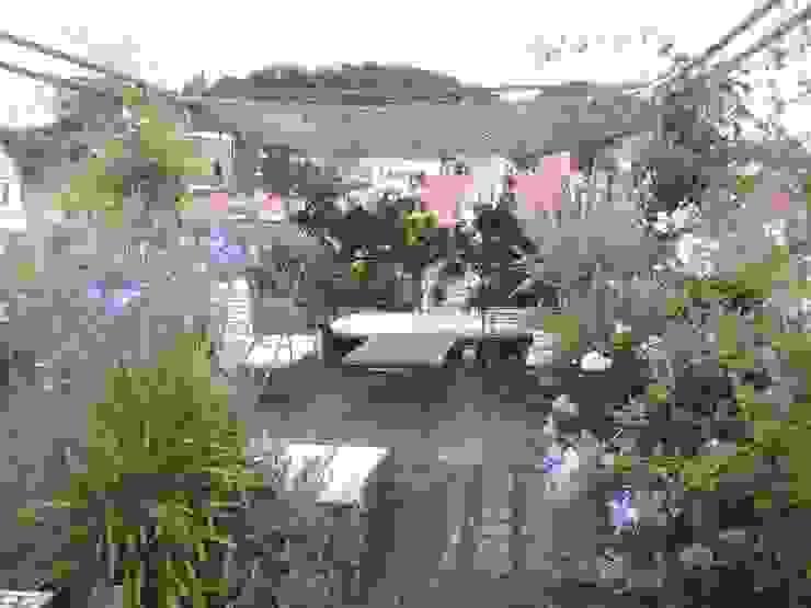 vista collina, a tre mesi dall'intervento GARDENStudio 'il giardiniere goloso'