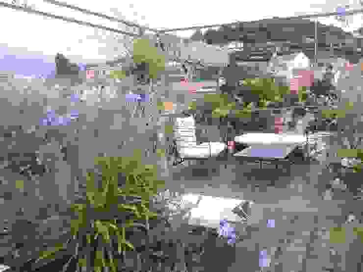 zona living, con rete ombreggiante raccolta GARDENStudio 'il giardiniere goloso'