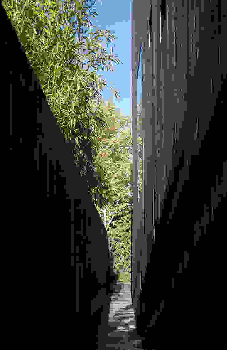 Ed's Shed Minimalist walls & floors by Ed Reeve Minimalist