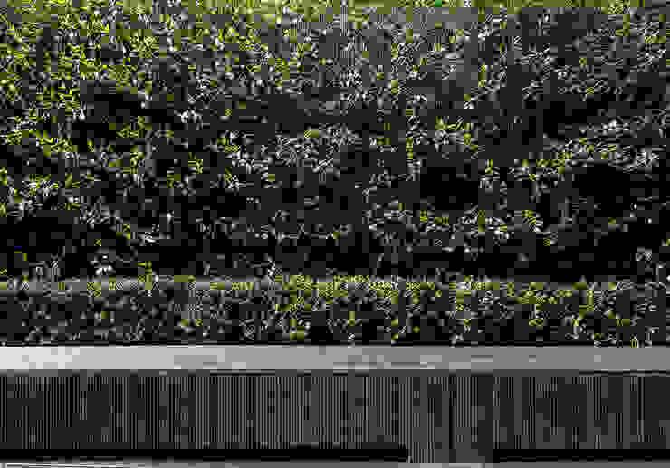 Garden detail Minimalist style garden by Ed Reeve Minimalist