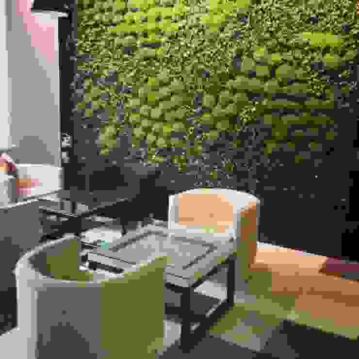Вертикальное озеленение, монтаж закончен от RaStenia Лофт