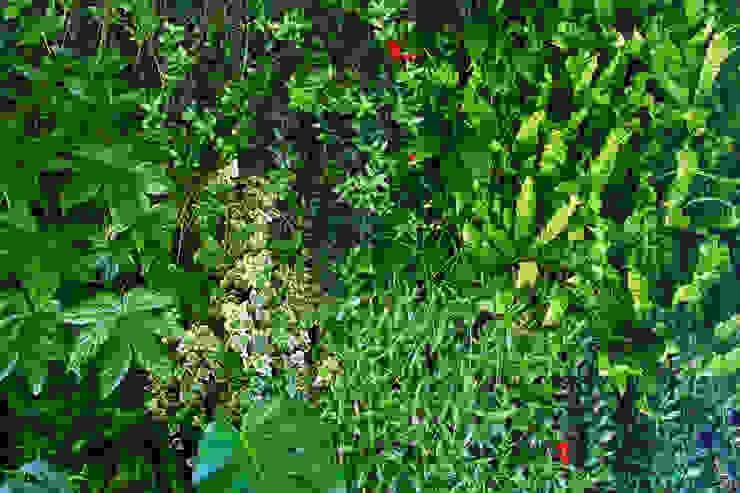 Пышное вертикальное озеленение в частном доме от RaStenia Скандинавский