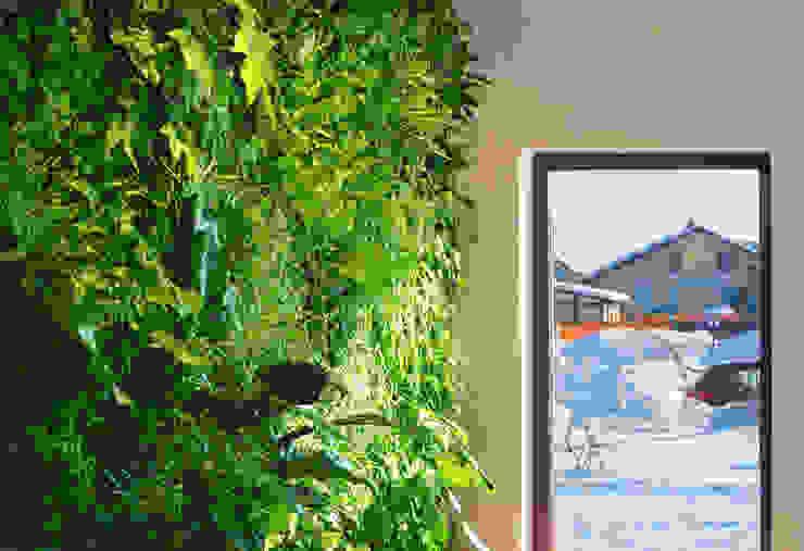 Вертикальный зимний сад в частном коттедже: Озеленение  в . Автор – RaStenia