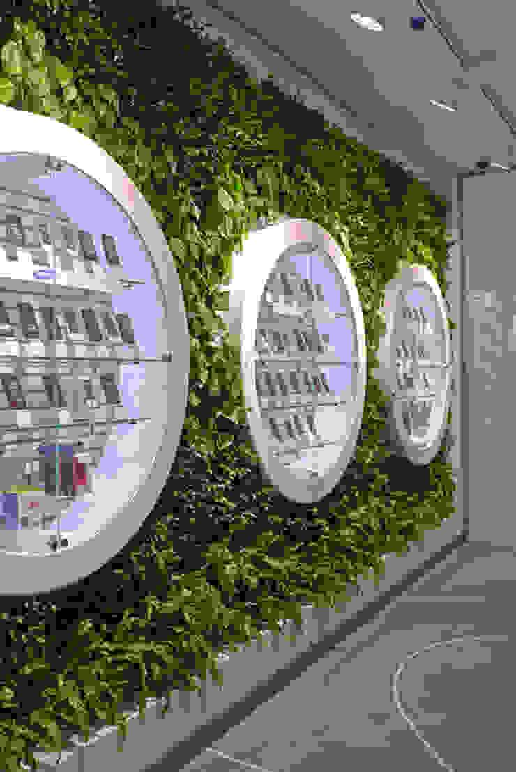 Многообразие форм вертикального озеленения RaStenia:  в современный. Автор – RaStenia, Модерн