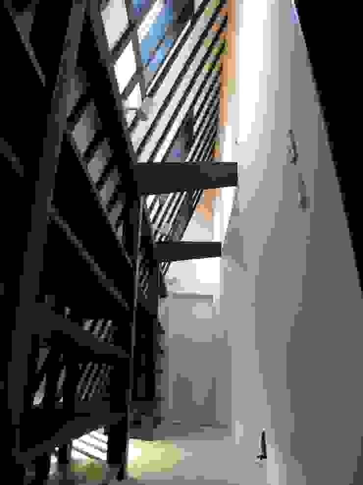 Black アースワーク建築設計事務所 インテリアランドスケープ