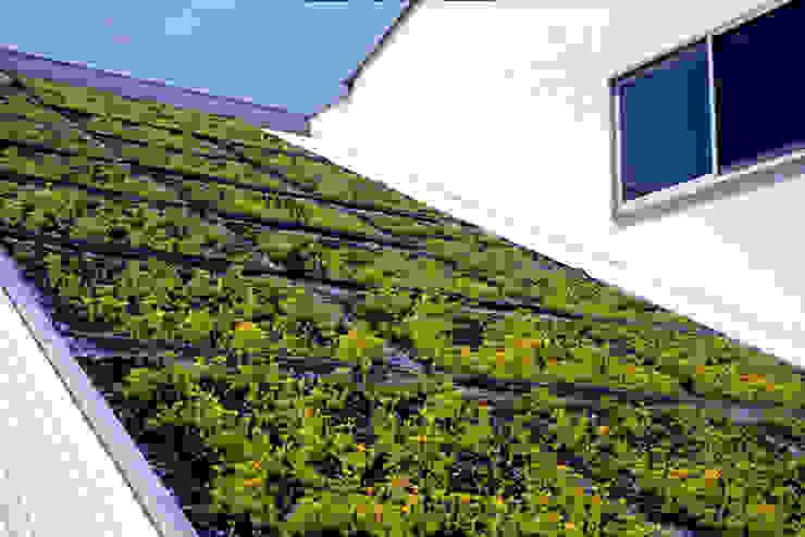 屋根緑化 オリジナルな 家 の ジェイ石田アソシエイツ オリジナル