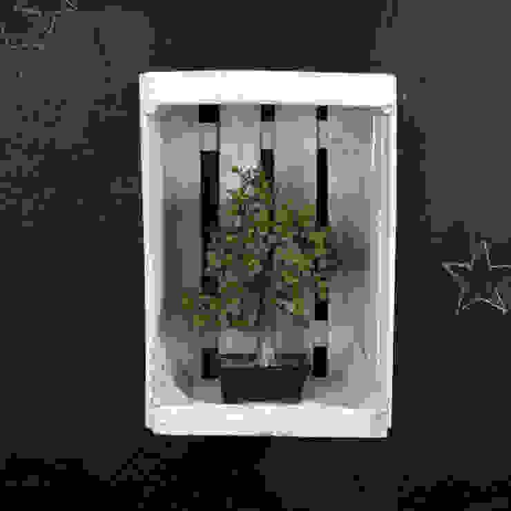 ARCE estantería cajas de fruta de ECOdECO Mobiliario Rústico