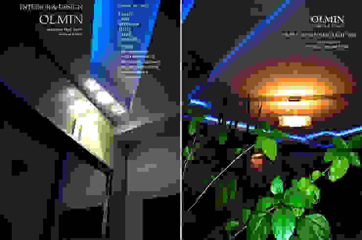 controlled mood от ИП OLMIN - Архитектурная студия Олега Минакова