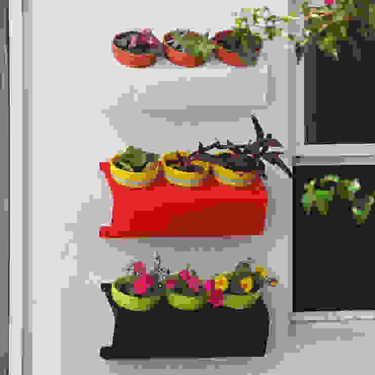 Sílice - almacén de diseño - Balconies, verandas & terraces Plants & flowers