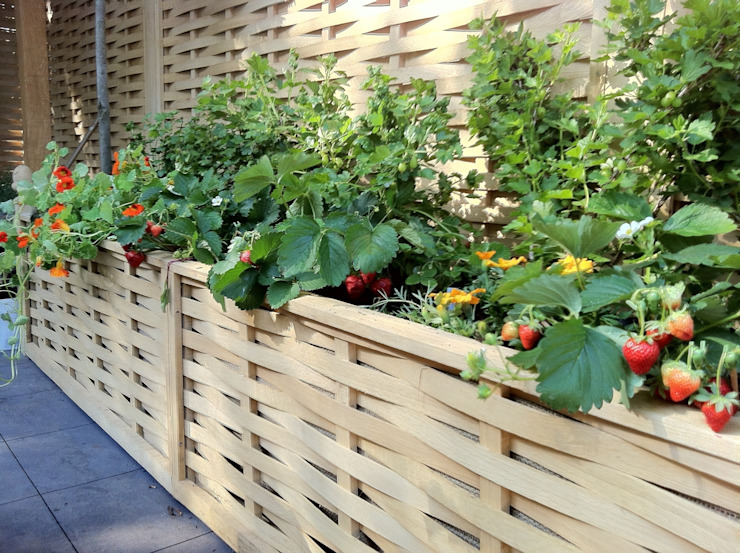 raised beds border edging Jardines de estilo minimalista de Quercus UK Ltd Minimalista
