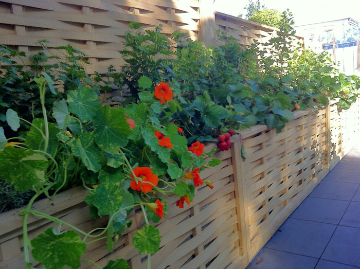 Raised Beds -Borer Edging Giardino moderno di Quercus UK Ltd Moderno