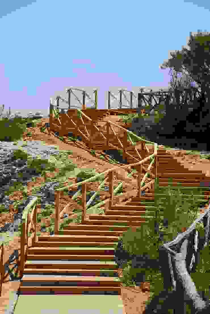 Valla , pasarelas y escaleras de madera de pino tratado. L'Escala – Empúries Paredes y suelos de estilo mediterráneo de Fitor Forestal SL Mediterráneo