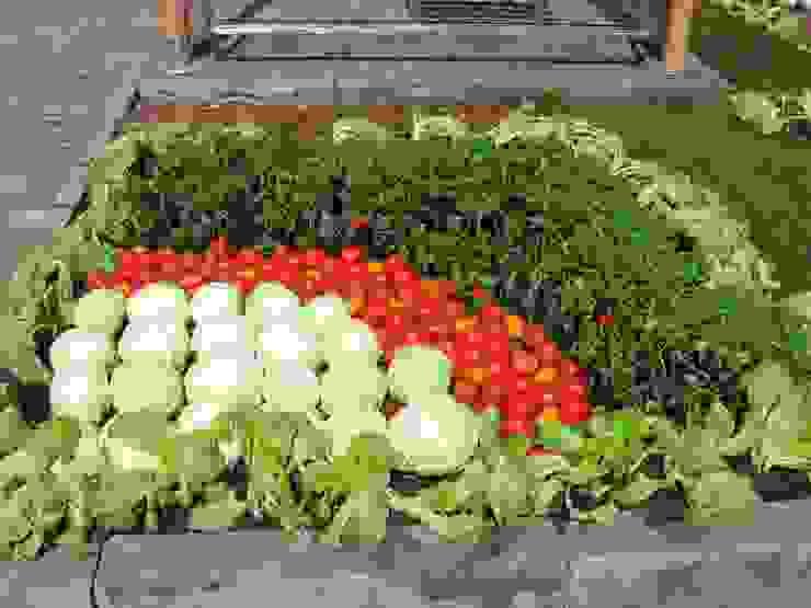 нашествие овощей:) Сад в тропическом стиле от TOPOS Тропический