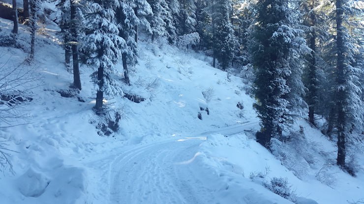 Corporate Meets Near Shimla by Snow King Retreat