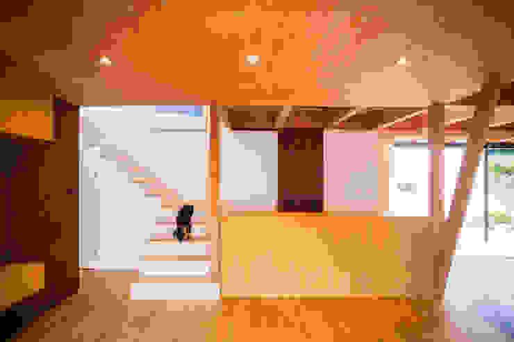 TMS オリジナルスタイルの 玄関&廊下&階段 の ZOYA Design Office オリジナル 木 木目調