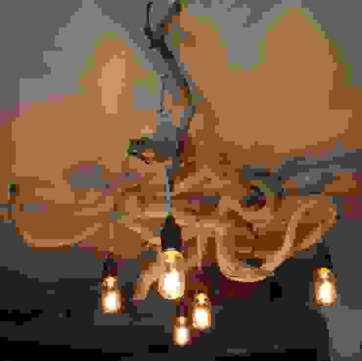 Driftwood chandeliers: modern  by Julia's Driftwood, Modern