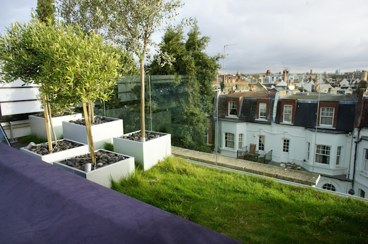 Fulham Roof Terrace Organic Roofs 露臺