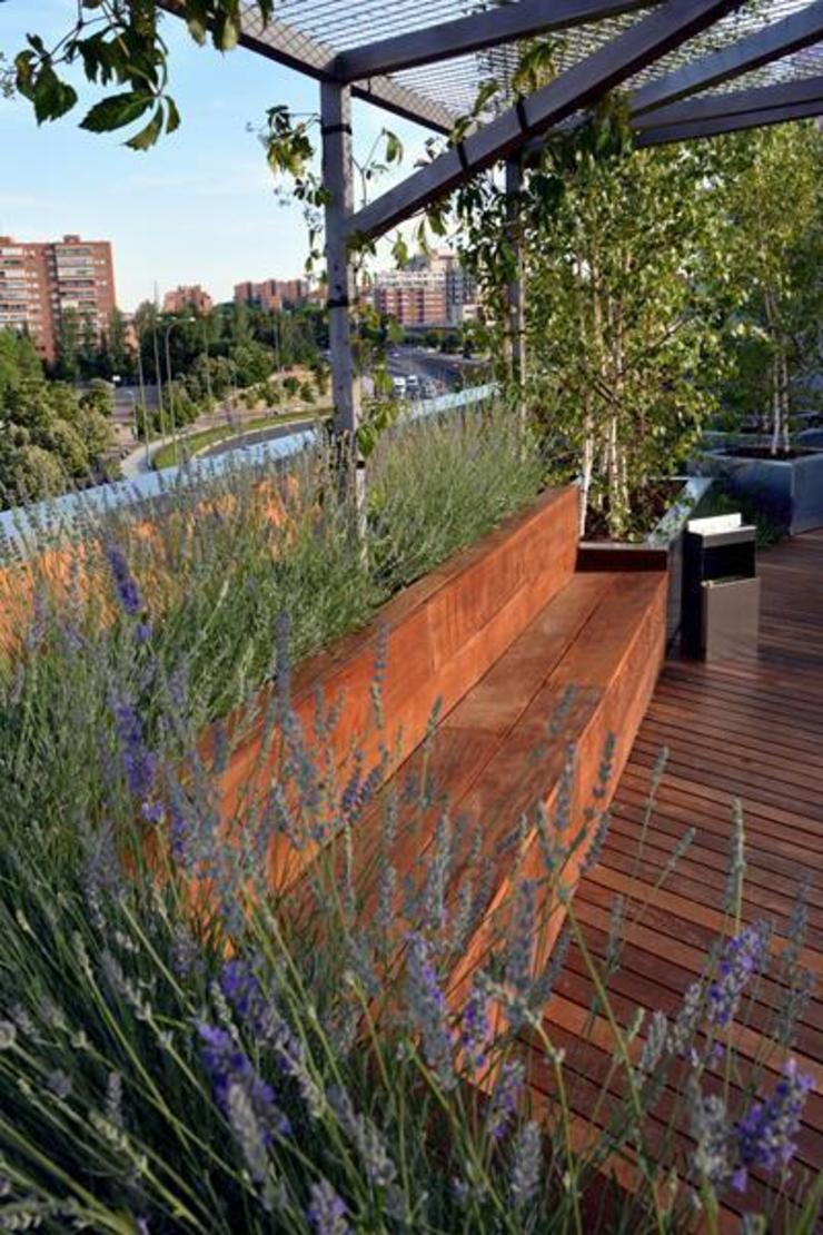 La Paisajista - Jardines con Alma Moderne Bürogebäude