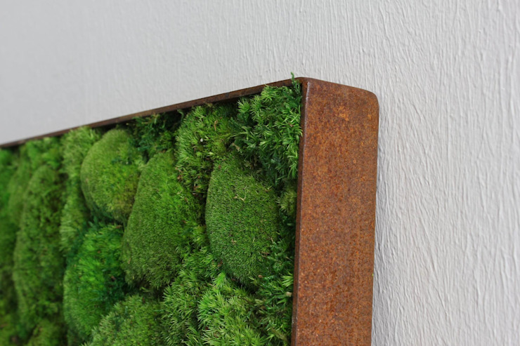 Kugelmoos im Roststahl Rahmen: modern  von FlowerArt GmbH | styleGREEN,Modern Naturfaser Beige