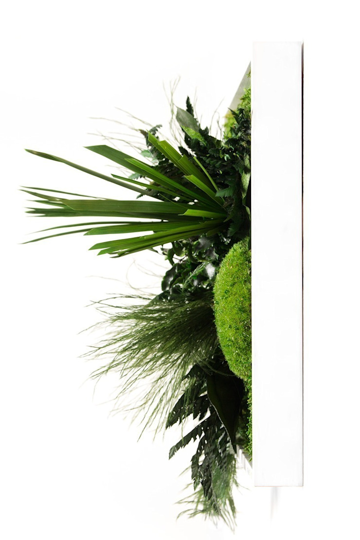 Pflanzenbild 3D in der Seitenansicht: modern  von FlowerArt GmbH | styleGREEN,Modern Naturfaser Beige