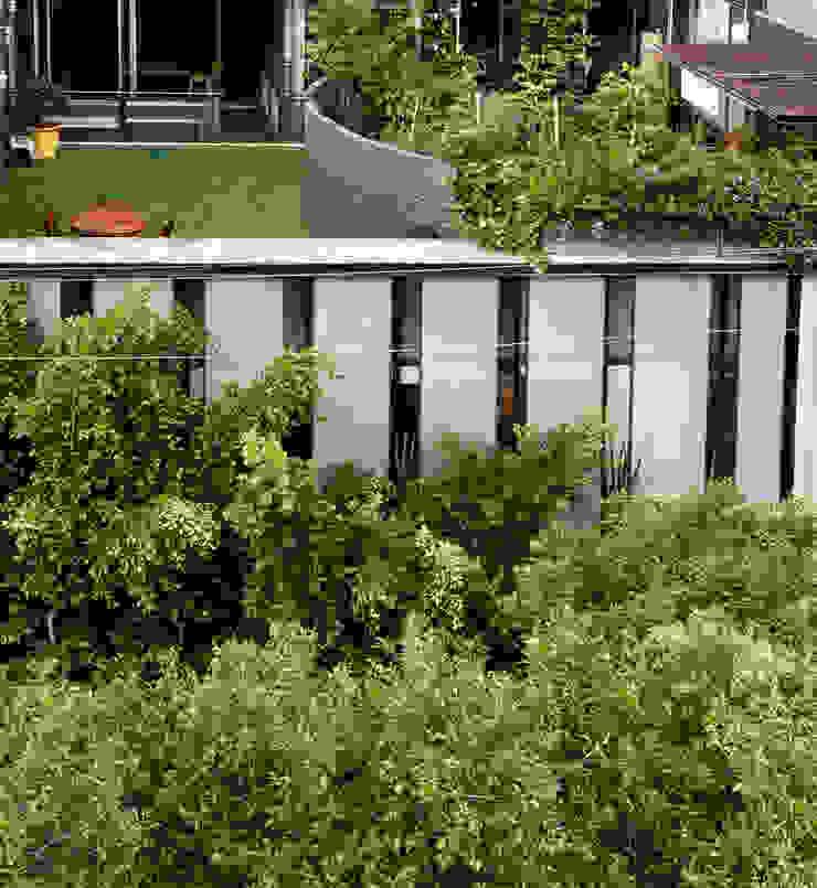 Minimalistischer Garten von Cm2 Management Minimalistisch