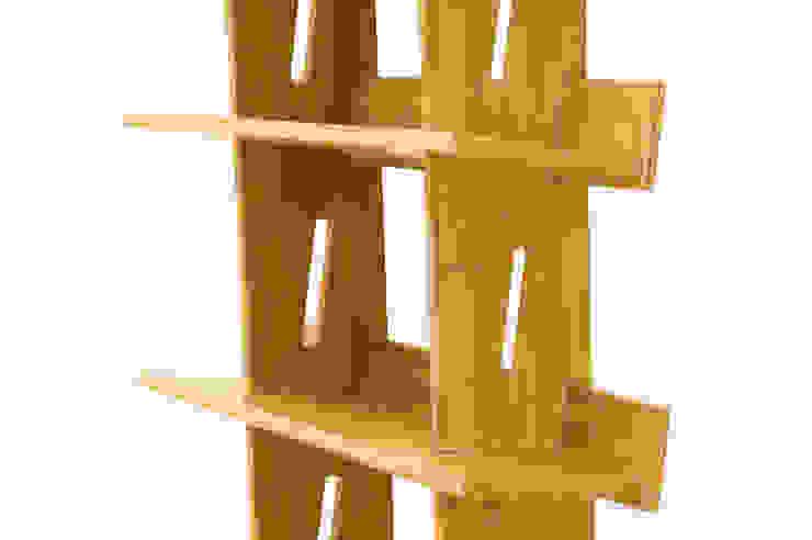 Bookcase, 5 Book Shelves: modern  by Finoak LTD, Modern