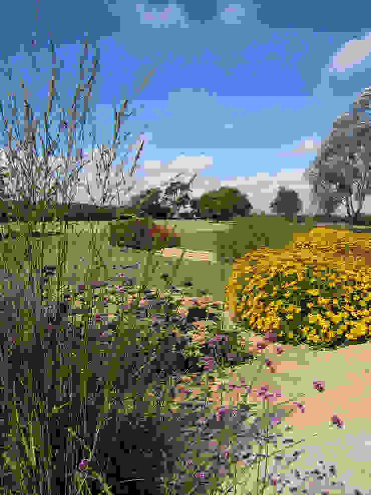 Bold planting Modern garden by Paul Dracott Garden Design Modern