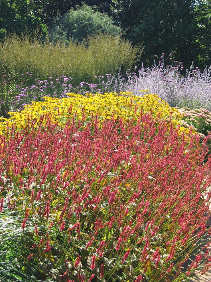 Perennial Planting Country style garden by Paul Dracott Garden Design Country