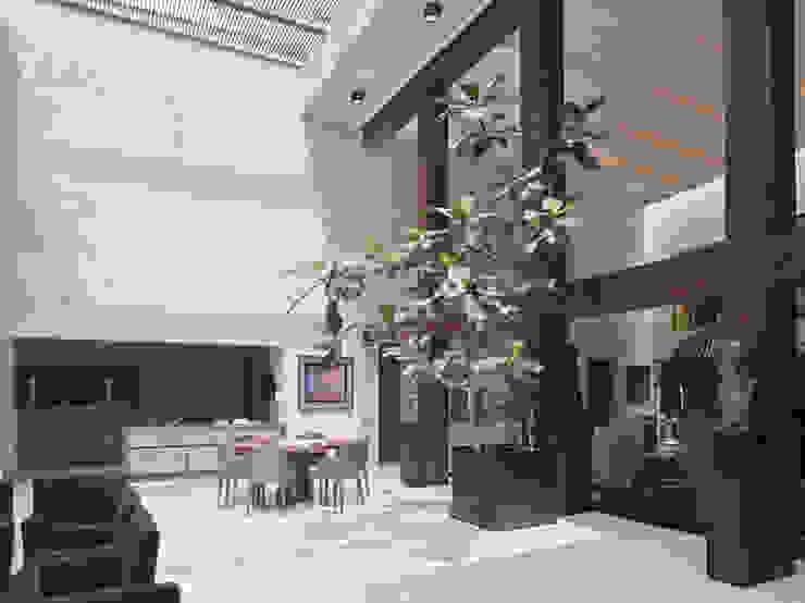 Casa H Cm2 Management Comedores minimalistas