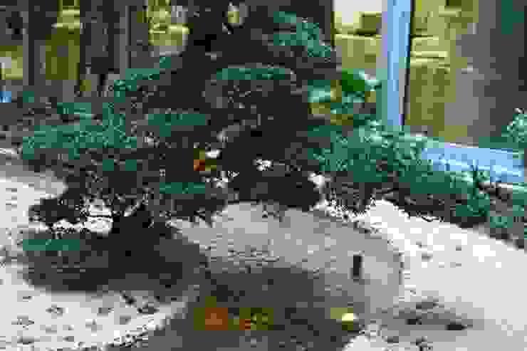 Jardines de estilo asiático de Giuseppe Maria Padoan bioarchitetto - casarmonia progetti e servizi Asiático
