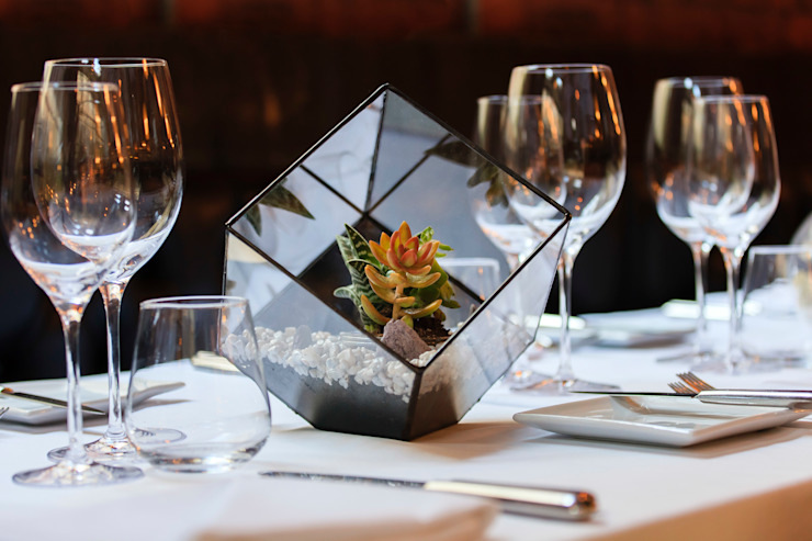 Aztec Cube Terrarium as Stunning Table Centrepiece por The Urban Botanist Moderno