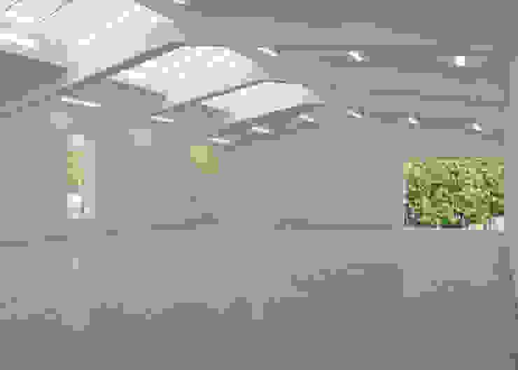 Anish Kapoor Studio Modern windows & doors by Caseyfierro Architects Modern