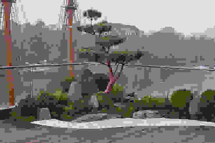 Über den Dächern von Leer Asiatischer Garten von Kokeniwa Japanische Gartengestaltung Asiatisch