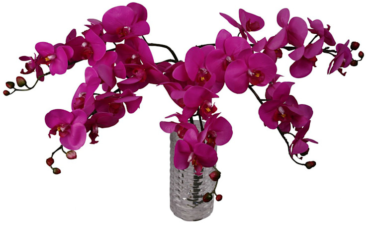 Flowers—Orchids and Lily: modern  by Uberlyfe,Modern