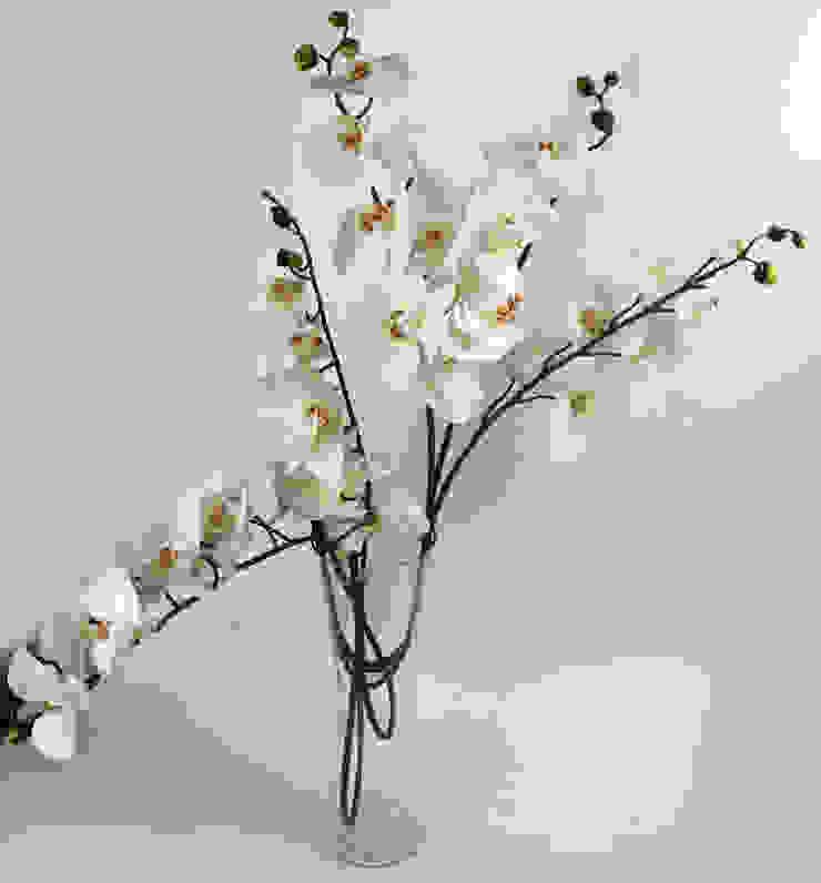 Flowers—Orchids and Lily: minimalist  by Uberlyfe,Minimalist