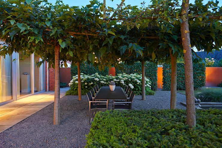 Main terrace under roof of Morus trees with Hydrangea and corten steel garden wall/ Hoofdterras moderne tuin onder Morus dakbomen met hortensia's en corten stalen tuinmuur. FLORERA , design and realisation gardens and other outdoor spaces. Modern garden