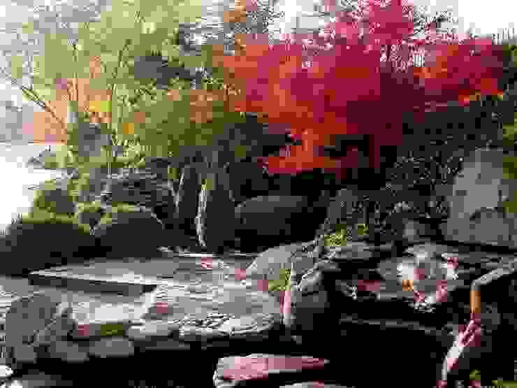 Сады в . Автор – La ermita de Pozuelo,